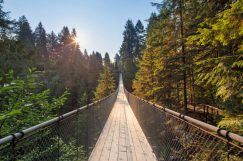 https:::www.familyfuncanada.com:vancouver:capilano-suspension-bridge: