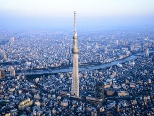 https:::www.veltra.com:en:asia:japan:tokyo:a:141631